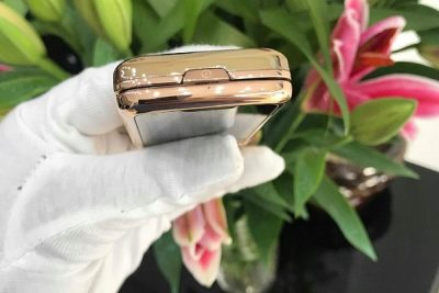 Nokia 8800E Rose Gold khảm thuyền buồn cá chép